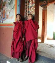 Shy Monks
